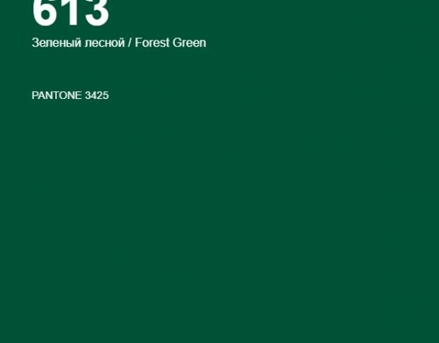 Oracal 641 613 Gloss Forest Green 1 m