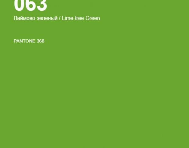 Oracal 641 063 Matte Lime Tree Green 1 m